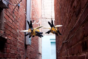 alley.bees.007